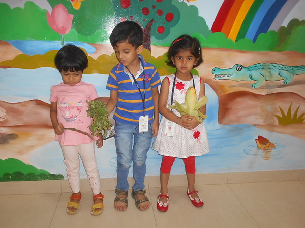 DEVELOPING COGNITIVE, SOCIAL AND COMMUNICATION SKILLS THROUGH SHOW AND TELL ACTIVITY