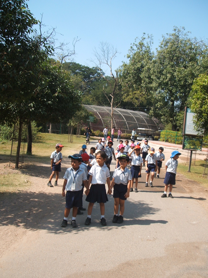 RELATING CLASSROOM LEARNING TO OUTSIDE WORLD- FIELD TRIP TO ZOO