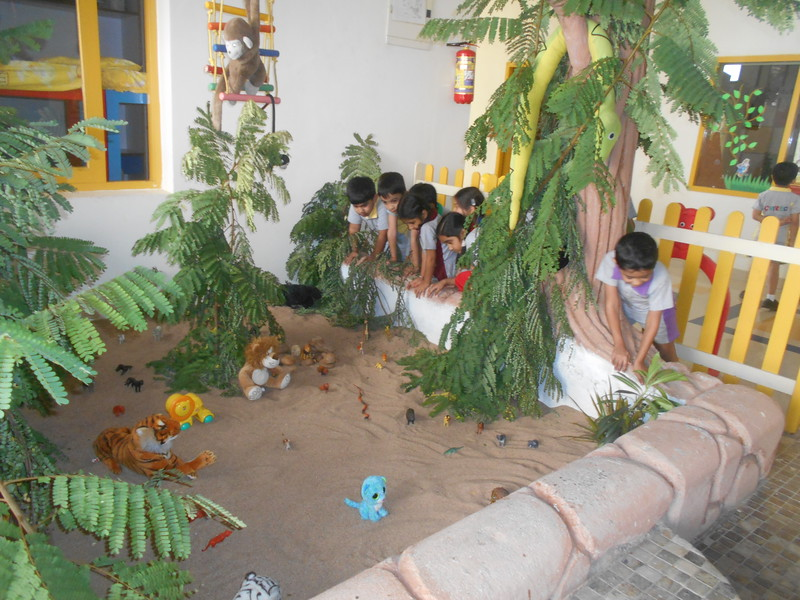 KANGAS  LOOKING AT  WILD ANIMALS - SET UP OF THE JUNGLE DURING THE TOPIC WILD ANIMALS