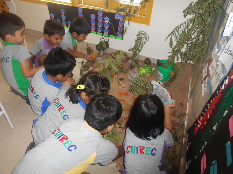 DEVELOPING COGNITIVE AND SOCIAL SKILLS DURING GROUP ACTIVITY - SETTING UP A FOREST