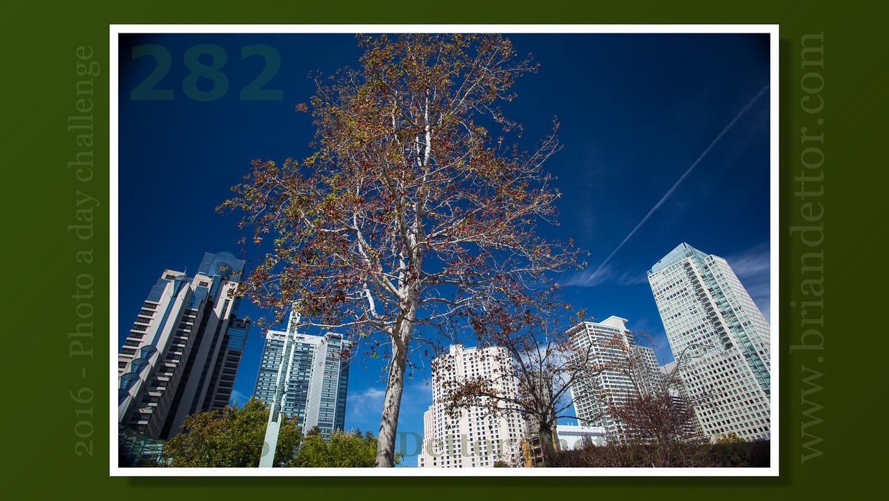 Day #282 - Yerba Buena Gardens