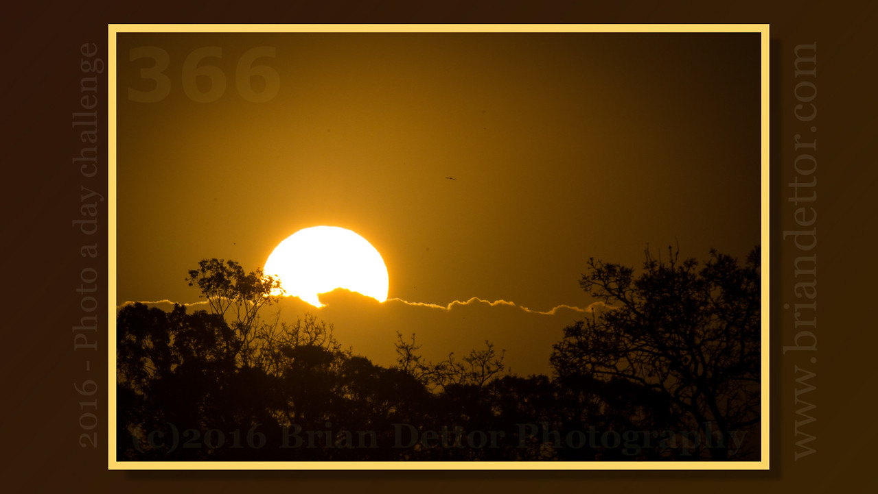 Day #366 - The Sun Will Always Rise