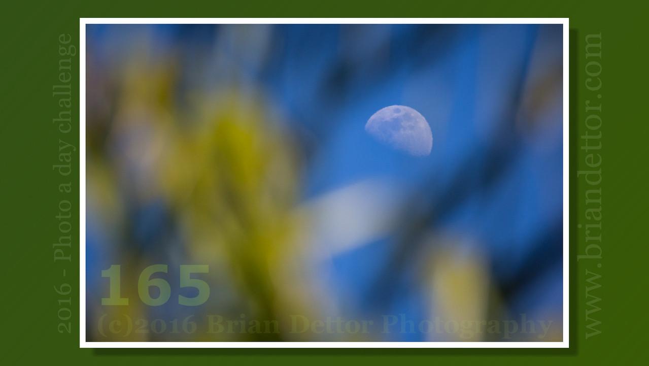 Day #165 - June Moon