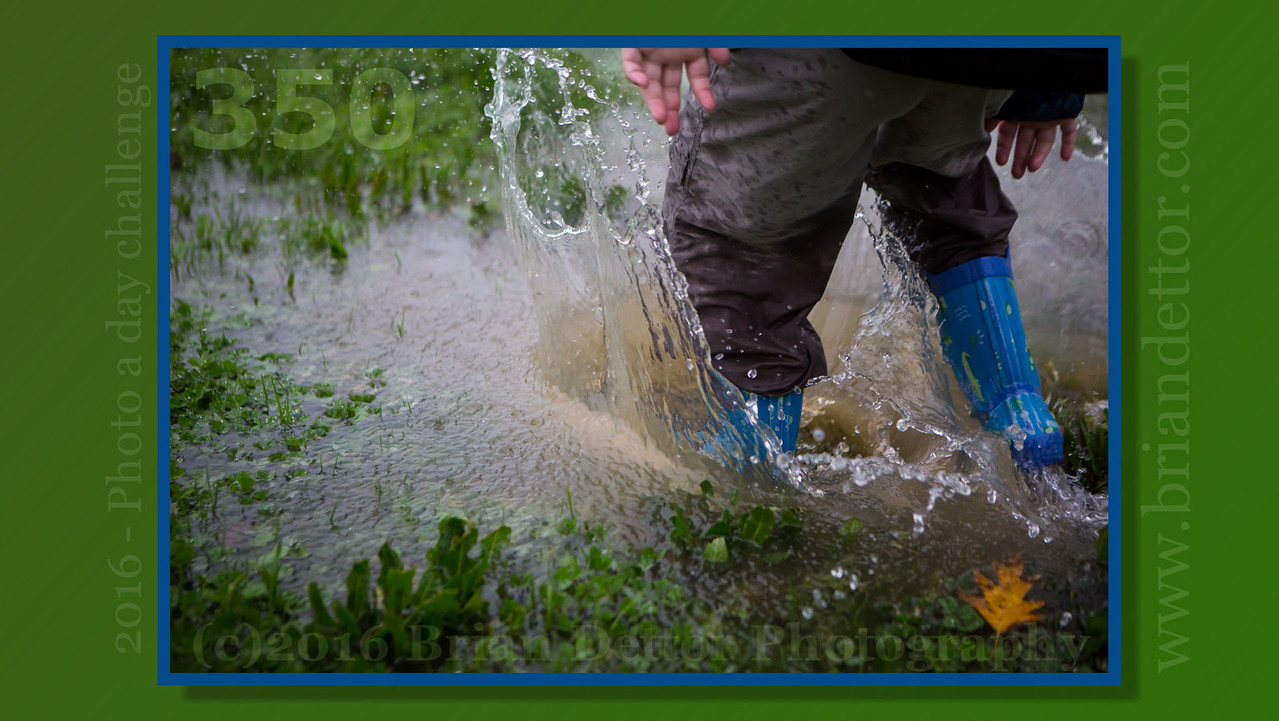 Day #350 - Puddle Stomp!