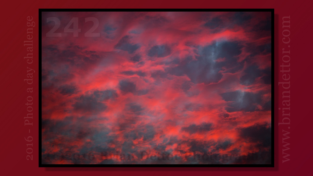 Day #242 - Sunset Clouds