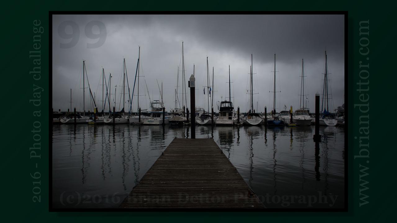 Day #99 - Tiburon Dock