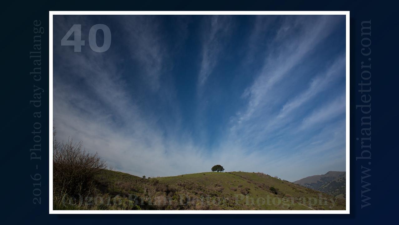 Day #40 - Terra Linda Hills
