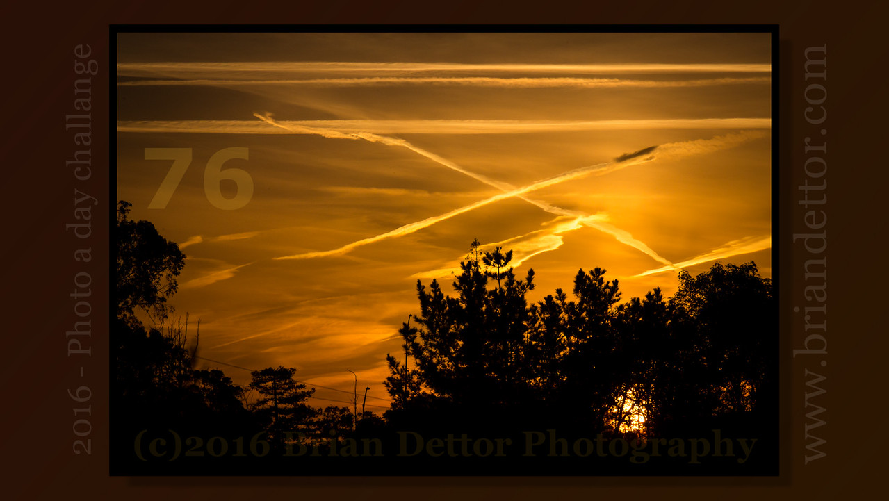 Day #76 - X Marks the Morning Sky