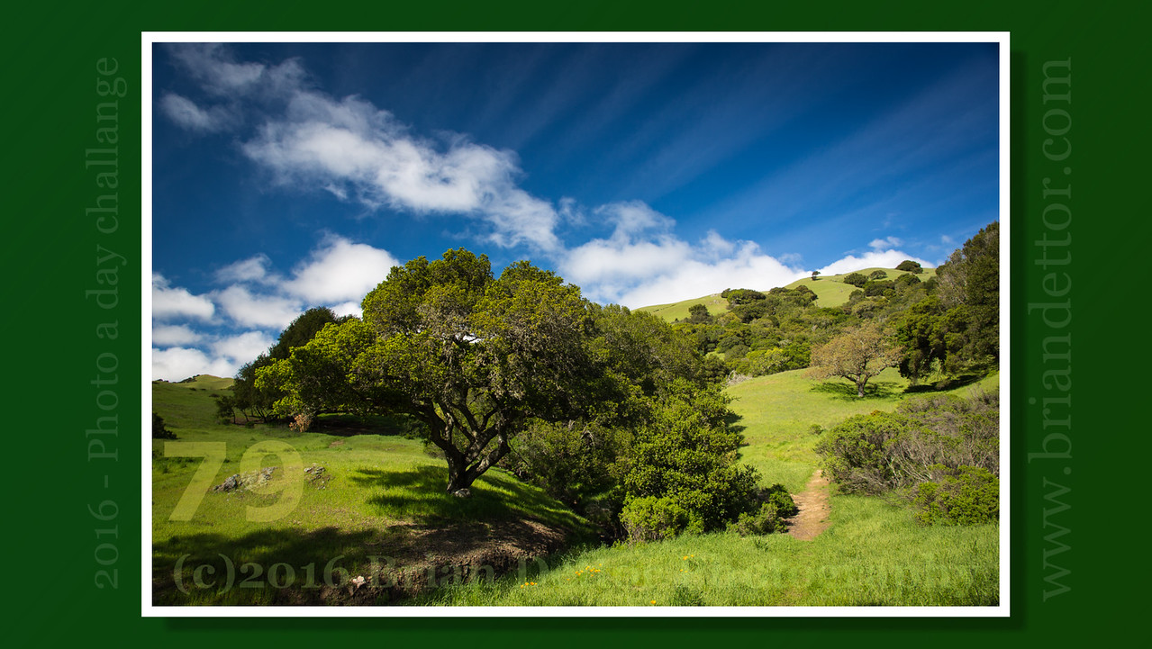 Day #79 - Lucas Valley Hills