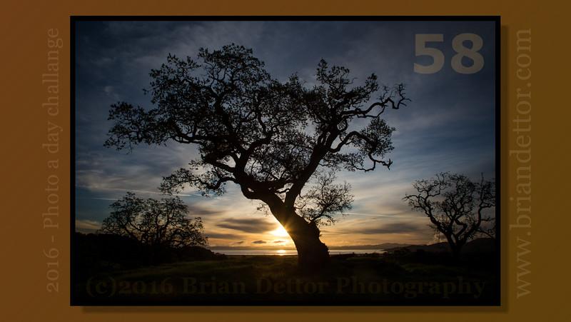 #58 - Sunrise