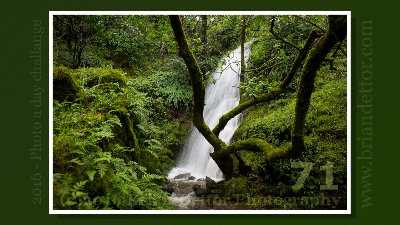 Day #71 - Pacheco Valle Falls