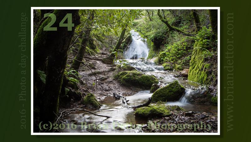 Day #24 - Novato Waterfall
