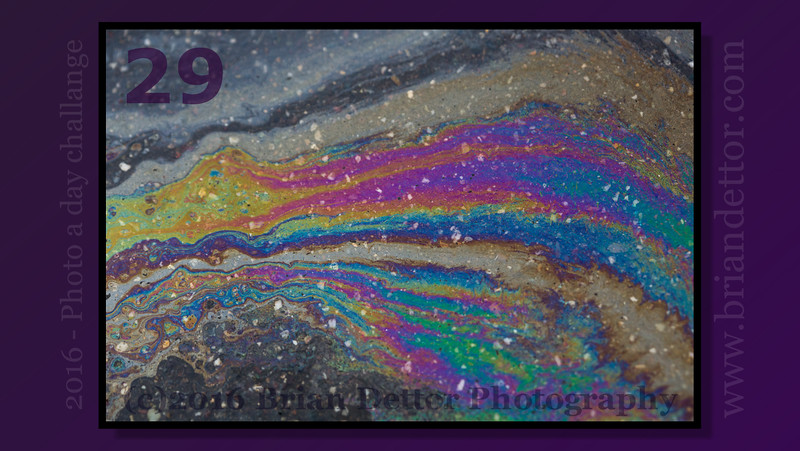 Day #29 - Rainbow Oil Slick