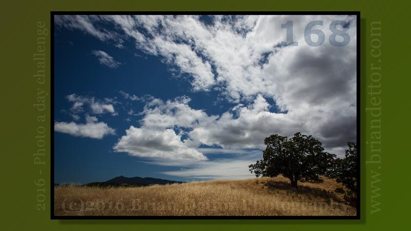 Day #168 - Mt. Tamalpais (from Grasshopper Hill)