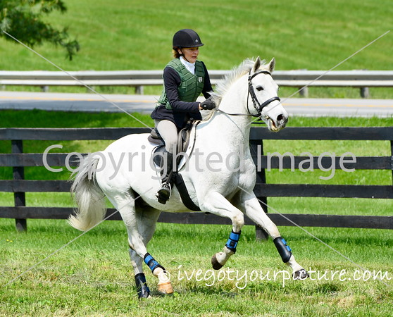 This image available for digital purchase only.  Prints can be purchased here: http://www.ivegotyourpicture.com/2016EquestrianEvents/42FDL-Flying-Cross-May-2016/i-8CcgC58/buy