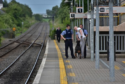 """This """"Gentleman"""" had decided it was a good idea to take his rottweiler for a stroll on the railway line at Portlaoise. He had been spotted sitting on the Mountrath Road Bridge by a member of the public who had called the Gardai.   Once the Gardai had called the Iarnrod Eireann emergency number to CTC, all traffic through Portlaoise was stopped. Meanwhile the person had waked along the Station Loop to the Station Platform and was intercepted by the Gardai who then removed him from the Station.   The 1620 Portlaoise - Heuston was delayed 9 minutes and the 1525 Heuston - Limerick was delayed 15 minutes while this individual was removed from the station. Tues 21.06.16"""