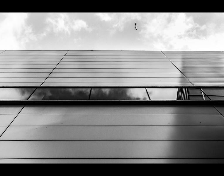 Second Place Architecture<br /> 2016 Top Program Contest<br /> Odin Contreras<br /> Texas High School (Texarkana)<br /> Instructor: Clint Smith