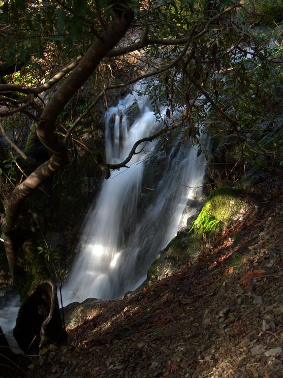 Upper Rogue River Trail Oregon