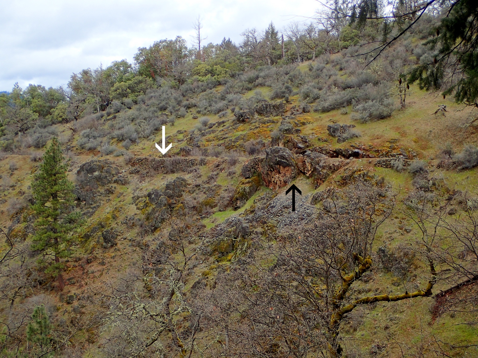 Layton Mine Ditch Williams Oregon