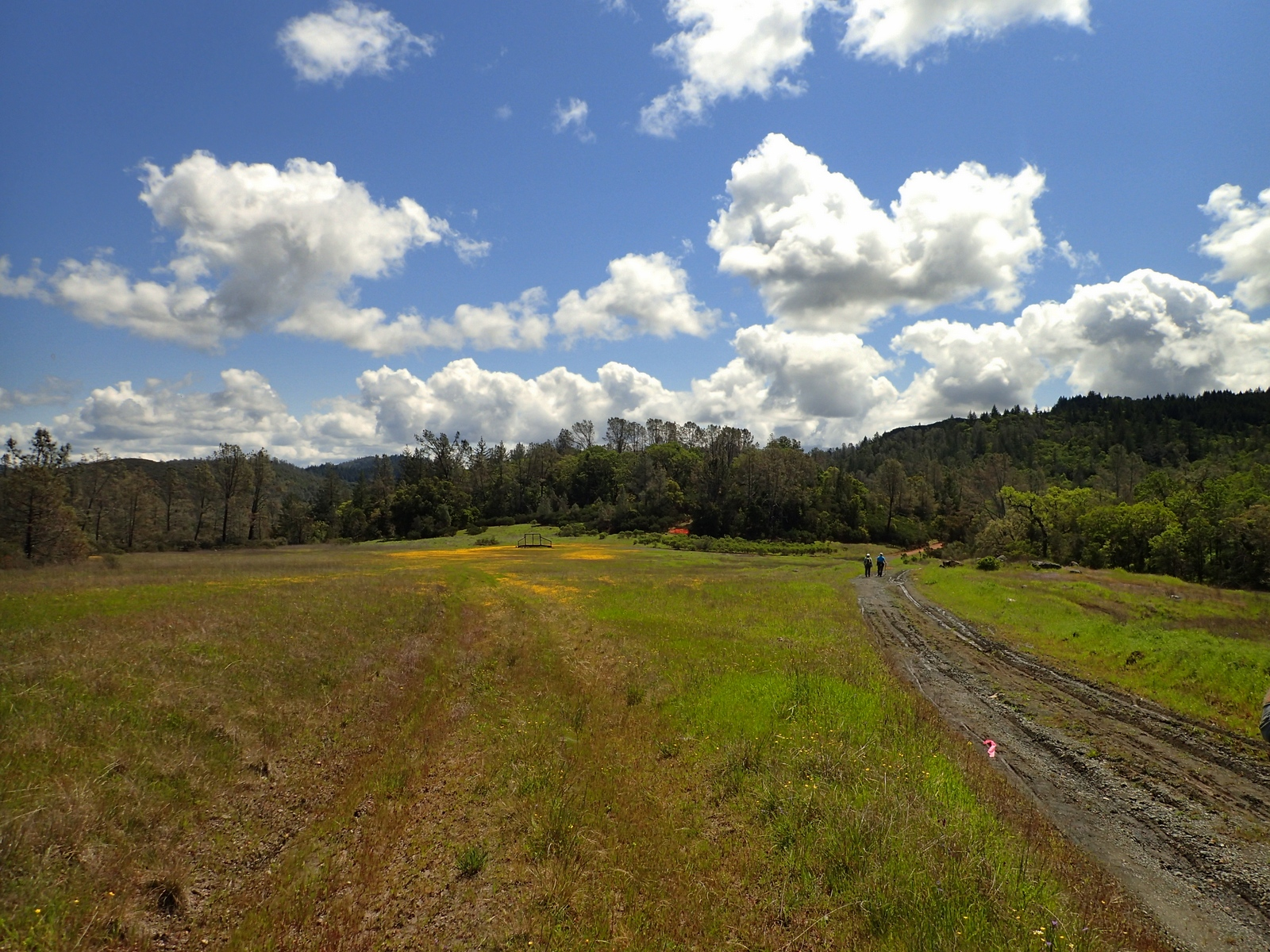 Moore Creek Trail Napa County California