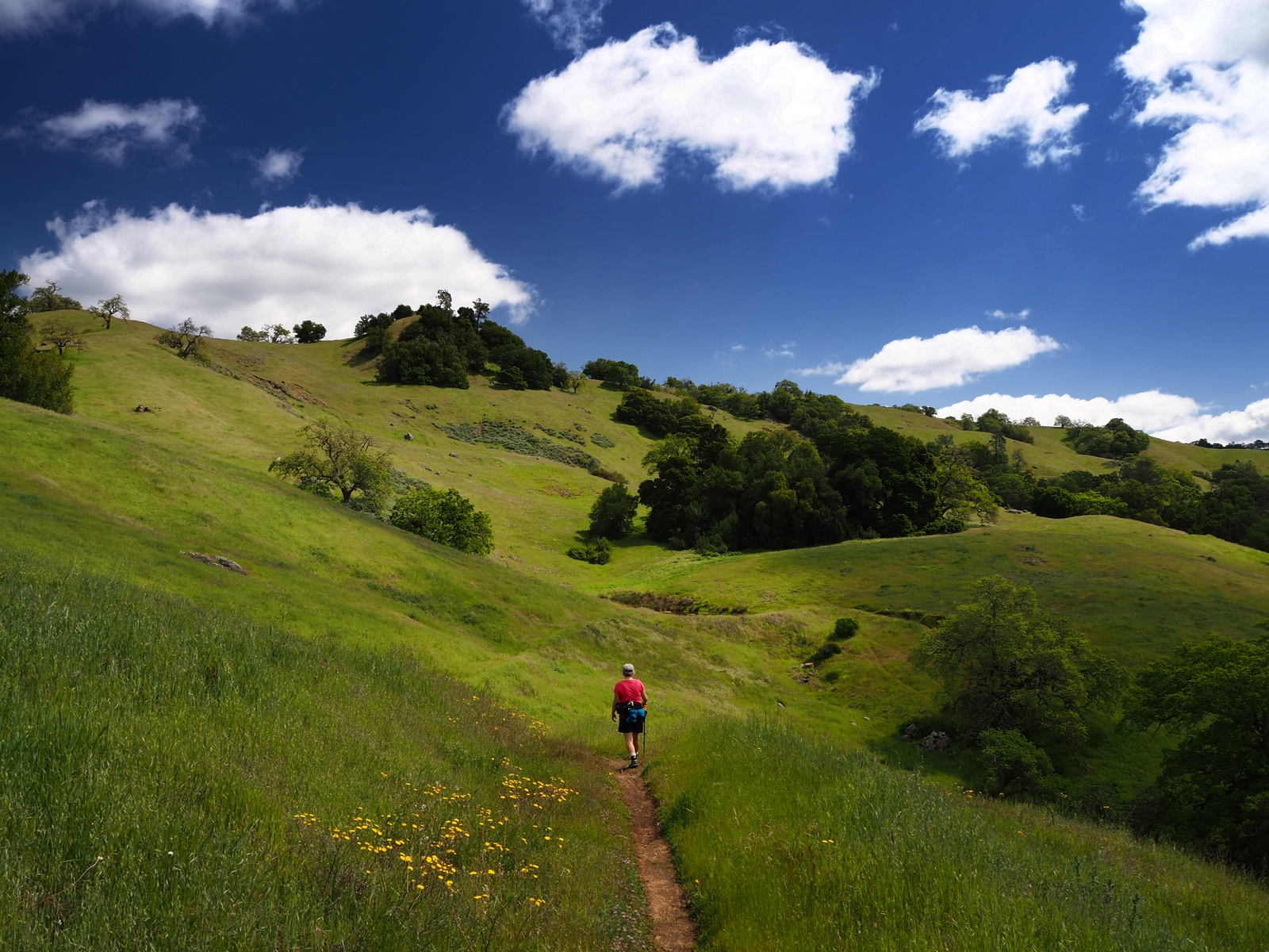 Henry W. Coe State Park California