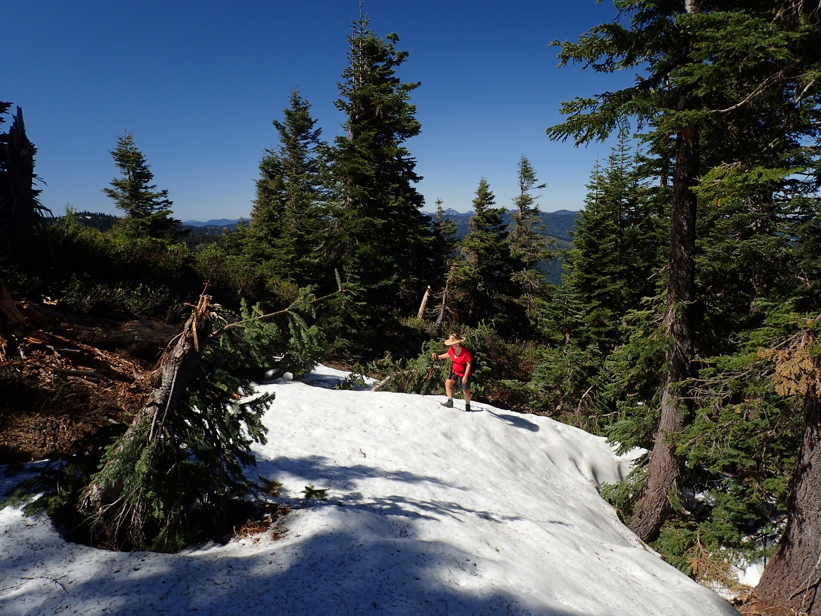 Elk Creek Trail Siskiyou Crest Oregon