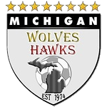 Bu16 Michigan Wolves Vs Midwest United FC