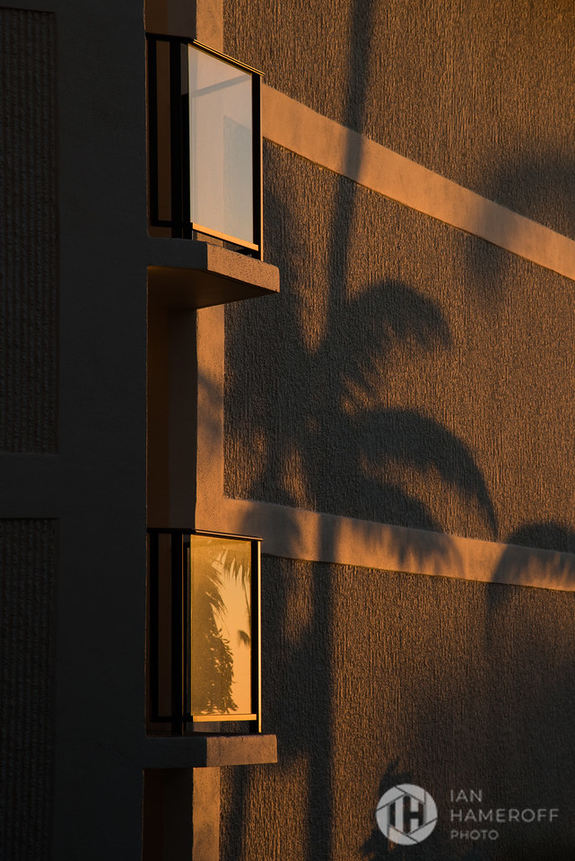 Sunset Shadows