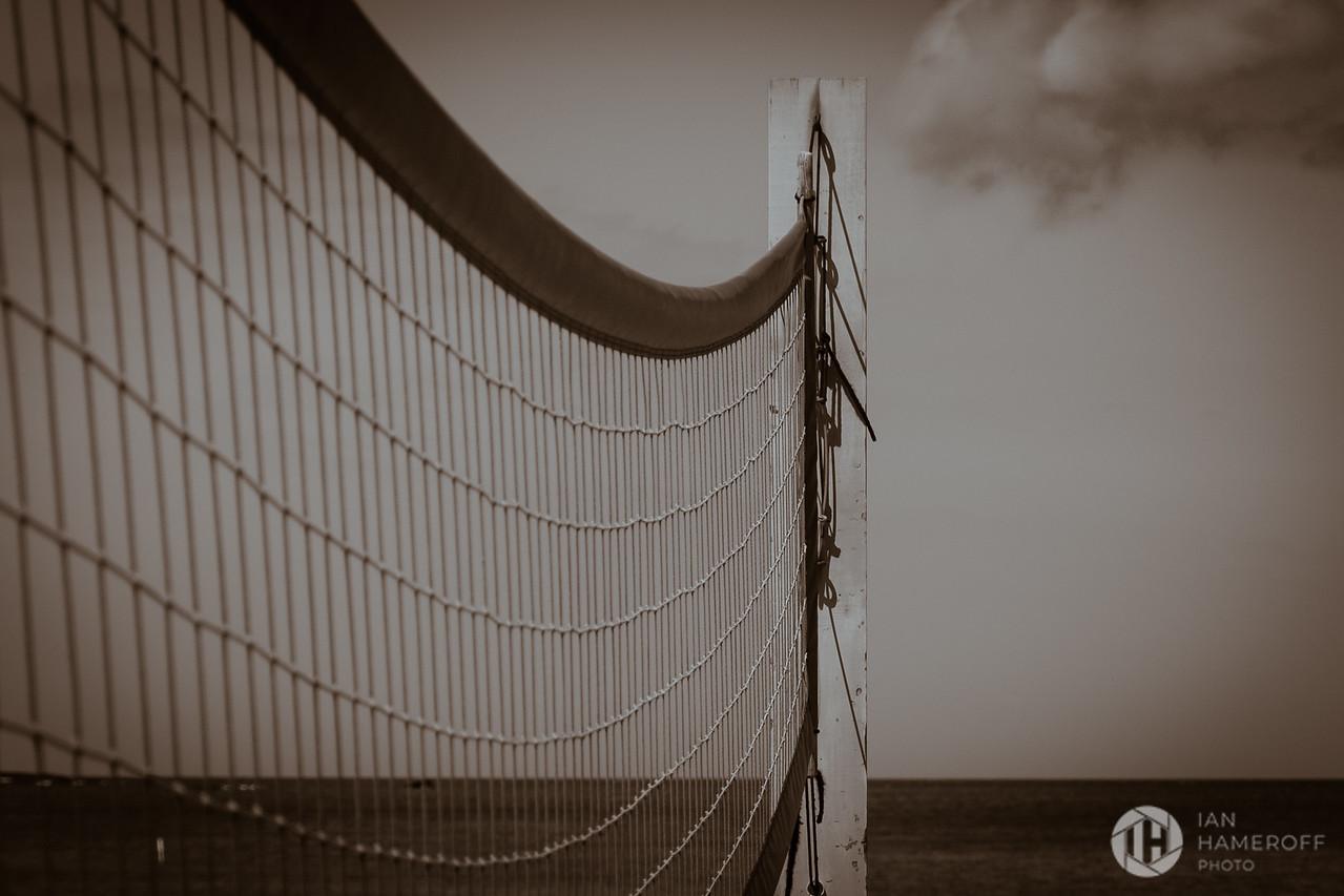 Net into the Seapia
