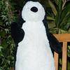 Penguins CM-5
