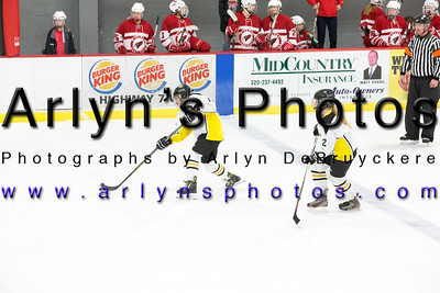 Girls Hockey JV vs Willmar, Varsity vs New ulm