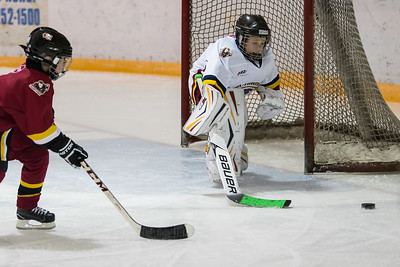 Oct 15 Novice 3751-2_Goalie