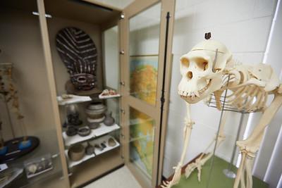 2017_UWL_Archeology_Anthropology_Lab_0064