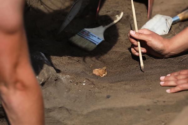 2017 UWL Archaeology Holmen6