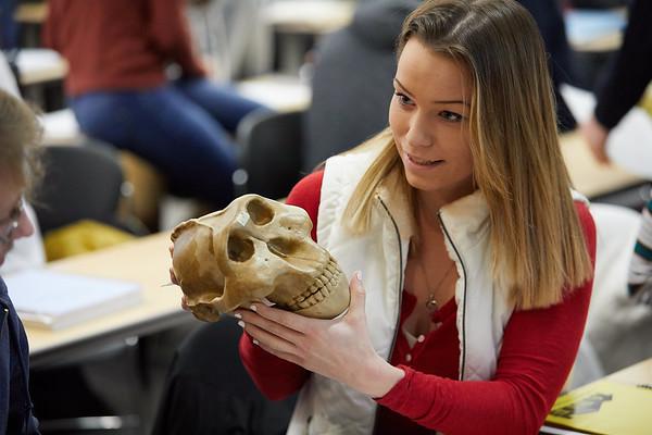 2018_UWL_Anthropology_Class_Skulls_0022
