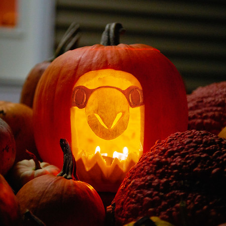 2017_UWL_Clock_Tower_Pumpkin_Carving_0022