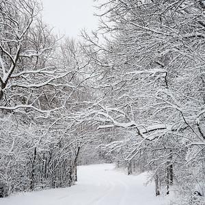 2020 UWL Winter Snow Bluffs 2