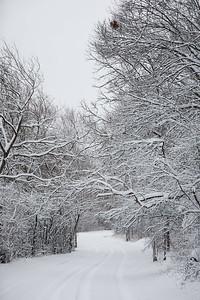 2020 UWL Winter Snow Bluffs 7