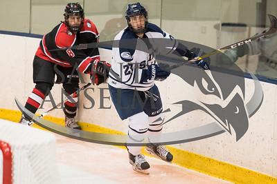 Men's Ice Hockey vs. Bryn Athyn (10/27/17) Courtesy Jim Stankiewicz
