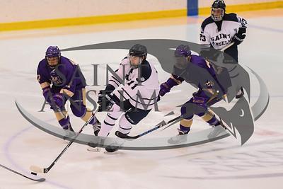 Men's Ice Hockey vs. Saint Michael's (03/03/18) - NE10 Championship - Courtesy Bruce Preston
