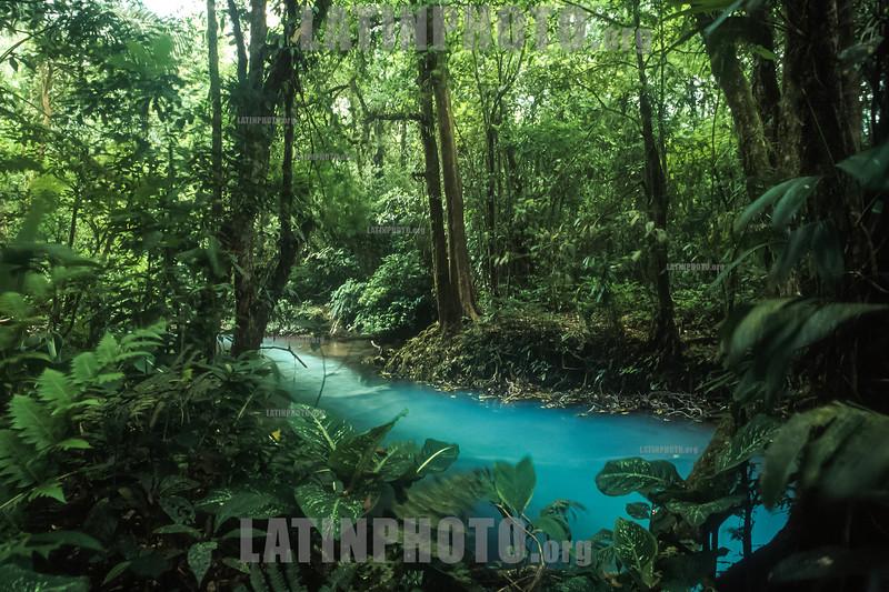 "Costa Rica : Tenorio National Park , "" Teñidero ""  / Costa Rica :  Nationalpark Tenorio © Víctor Jaramillo/LATINPHOTO.org"