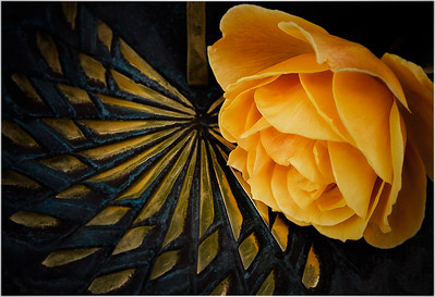Tea Rose on a Sundial by Rich Fiedorowicz - Judges' Selection  -  2017-2018 QCC #1