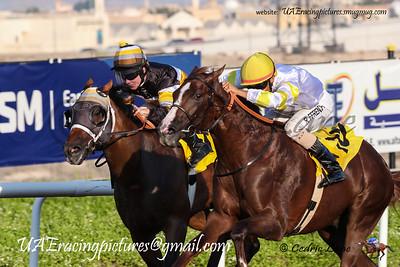 2017-2018 Horse Racing Season