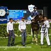 Horse Racing from Meydan, Dubai, United Arab Emirates
