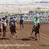 Horse Racing,Jebel Ali, Dubai, United Arab Emirates