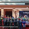 LONGINES HKIR, Sha Tin, Hong Kong, Horse Racing.