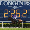 LONGINES HKIR, Sha Tin, Hong Kong, Horse Racing.