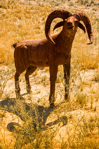 Bighorn sheep metal sculpture at Anza-Borrego State Park in California
