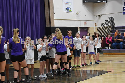 Volleyball Game Pictures