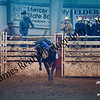 1-20-2018 Sundance Rodeo (Bull Riding Short-Go) (85 of 98)